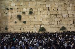 DSC_0866 (milan.popovic) Tags: israel jerusalem