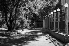 Walking Shadow (一 B_A_C 一) Tags: khabarovsk russia 伯力 哈巴羅夫斯克 俄羅斯 europe 歐洲 sony a73 a7iii a7m3 a7 taiwan 台灣 外拍 旅拍 travel 街拍 street streetphoto streetshot