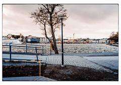 (schlomo jawotnik) Tags: 2019 oktober stockholm schweden kastellholmen absperrband strasenlaterne ufer baum skyline gebäude analog film kodak kodakproimage100 usw