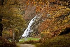 Powerscourt Waterfall (Kevin_Barrett_) Tags: ireland wicklow powerscourt water waterfall woods trees landscape scenic scenery serene autumn fall forrest foliage