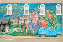 The Spirit of Romeo mural (suszkoglen) Tags: romeomi romeo murals spiritofromeo sonyrx100 michigan puremichigan