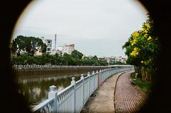 Saigon 2019 - Portra (☆naughtyword☆) Tags: kodakportra400 canon500n sigma 30mm f14