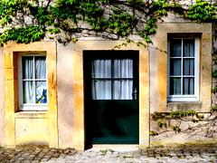 the tiny cottage (mujepa) Tags: cottage door virginiacreeper maisonnette porte window fenêtre garden