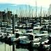 Promenade au port