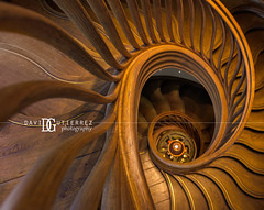 Steps - HIDE Restaurant, London, UK (davidgutierrez.co.uk) Tags: london photography davidgutierrezphotography city art architecture nikond810 nikon urban travel color night blue photographer tokyo paris bilbao hongkong interior uk londonphotographer design building colors colour colours colourful vibrant buildings england unitedkingdom 伦敦 londyn ロンドン 런던 лондон londres londra europe beautiful cityscape davidgutierrez capital structure britain greatbritain ultrawideangle afsnikkor1424mmf28ged 1424mm d810 arts landmark attraction architecturaldesign vivid interiordesign 倫敦 steps hiderestaurant hide restaurant