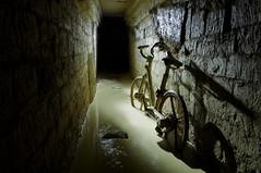 Vélo libre Sévice...