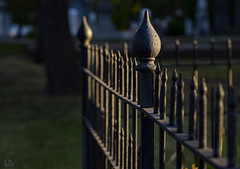 Victorian Fence in the Morning Sunrise Glow (klewis4848) Tags: hff happyfencefriday victorianerafence fencefriday fence fences morningglow goldenglow dof depthoffield