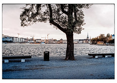 (schlomo jawotnik) Tags: 2019 oktober stockholm schweden kastellholmen bänke baum ufer kran kirchturm analog film kodak kodakproimage100 usw