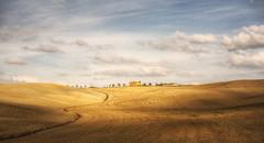 Tuscany19 #1 (Roberto Defilippi) Tags: 2019 362019 rodeos robertodefilippi tuscany toscana tonalitymask tmpanelv5 italia italy gobefilters nikon lights journey