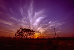 On to night............... (Rambonp:loves all creatures of this universe.) Tags: haryana india agriculture sky clouds blue red orange sun trees canon wallpaper sunset twilight