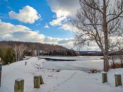 Virgin Ice at Rugg Pond . . . (Dr. Farnsworth) Tags: pond rapidriver earthen dam woods blue sky trumpeter swans contemplate nature ruggpond kalkaska mi michigan fall november2019