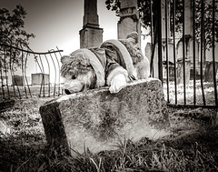 Stuffed Animal on Grave Marker (photographyguy) Tags: shreveport downtownshreveport oaklandcemetery louisiana bw blackandwhite grave cemetery headstone gravemarker stuffedanimal toy