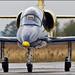 Baltic Bees  L-39 Albatros
