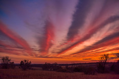 Kansas, U.S.A., Killer Sunset (thefisch1) Tags: sunset sunrise colorful lines linear horizon sky pasture tree pink