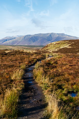 View of Blencathra from Gowbarrow Fell (nickcoates74) Tags: gowbarrowfell gowbarrow nationaltrust lakedistrict lakeland blencathra skiddaw path fell sony a6300 ilce6300 1650mm sel1650 epz1650mmf3556oss autumn november