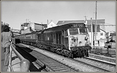 Shiver me timbers! (david.hayes77) Tags: teignmouth devon southwest westofengland class50 50038 1976 photographer summer englishelectric seaside coast ilford fp4 acutol bw blackandwhite mono monochrome wood planks