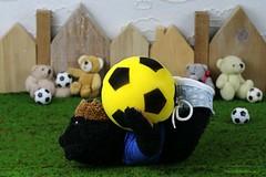 VOETBAL || FOOTBALL || SOCCER (Anne-Miek Bibbe) Tags: happyteddybeartuesdays speelgoed toy spielzeug giocattoli juguetes bringuedos jouets bear teddybear beertje teddybeer beer speelgoedbeer nounours minibeer minibear canoneos70d annemiekbibbe bibbe nederland 2019 tabletopphotography