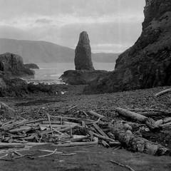 Dun Beag (Mark Rowell) Tags: sanday canna smallisles rum dunbeag scotland rolleiflexf28 expired fp4 driftwood 6x6 120 mediumformat film