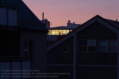 Die Fenster von Reykjavik (Agentur snapshot-photography) Tags: 012200 012300 04004003 alltag appartment architecture architektur bevölkerung búa dämmerung dämmerungsaufnahme dawn daybrak einblick einblicke fenster flat gesellschaft hauptstadt housing íbúð iceland isl island isländisch kiez lebensalltag lebenswelten momentaufnahme morgen morgendämmerung morgenrot morgens morning reykjavik reykjavíkurborg schnappschuss symbol symbolbild symbolfoto symbolfotos symole tageszeit twilight window windows wohnen wohngegend wohnung wohnungen wohnungsmarkt wohnviertel wohnwelten