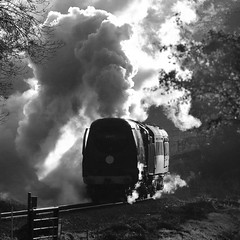 Good Morning (Treflyn) Tags: bulleid battle britain class 462 pacific 34072 257squadron catch early good morning sun steam tin bath swanage harmans cross railway during tle timeline events photo charter mono black white