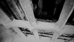 La dernière marche (Un jour en France) Tags: marche escalier strange étrange crime 21 lassassinhabiteau21 canoneos6dmarkii canonef1635mmf28liiusm eos monochrome noiretblanc noiretblancfrance