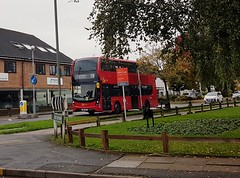 Photo of EH315 YW19 VPG on route 208, 25th October 2019.