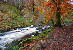 The Last Shot of The Day! (captures.in.time) Tags: landscape landscapephotography photography land scape water waterfall torrent flow river rivers rocks rock blue green tree forrest forest canon canonphotography polariser 09nd lseries 1740 countryside nationalpark wildlife patterns longexposure le perthshire perth autumn fall hermitage braan