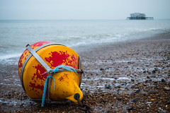 Waiting to be lifted by the sea (Michael Dales) Tags: brightonandhove england unitedkingdom buoy yellow beach sand sea