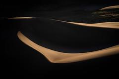 Colorado - The Dunes (virtualwayfarer) Tags: colorado unitedstatesofamerica crestone nature sand greatsanddunes sanddunes longlens dunesdune wild southwest landscape outdoors nationalpark desert aweinspiring protected naturephotography pristine americansouthwest greatoutdoors landscapephotography dramaticnature photographingamerica travel usa abstract beautiful beauty shadows natural scenic roadtrip natgeo singleexposure sonyalpha sonynordic a7riii sonyamericas rockies windy windswept continentaldivide coloradorockies travelphotographer alexberger