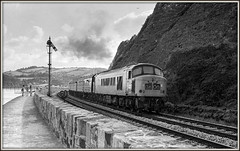 Oh, I do like to be beside the seaside! (david.hayes77) Tags: peak 45007 class45 class450 teignmouth devon southwest westofengland 1976 summer 50048 class50 englishelectric semaphore signal monochrome mono bw blackandwhite ilford fp4 acutol seaside seawall coast 1coco1 lowerquadrant 0000 seagulls sulzer type4 exhaust clag smoke