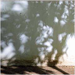 ronda 11 (beauty of all things) Tags: spanien espana andalusien ronda weis white quadratisch wände walls schatten shadows