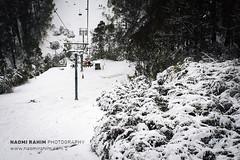 Mt Buller (Naomi Rahim (thanks for 5 million visits)) Tags: mtbuller mountbuller snow alpine mountains melbourne victoria australia 2019 nature landscape cold white travel travelphotography nikon nikond7200 chairlift