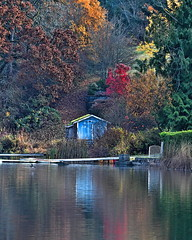 Quamichan colours . . . (dragonflydreams88) Tags: ©dragonflydreams88 quamichan lake autumn colours reflection shed boathouse trees bird