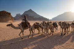 Bedouin (Keith - Glasgow) Tags: landscapes bedouin camels jordan middleeast desert travel wadirum
