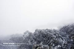Mt Buller (Naomi Rahim (thanks for 5 million visits)) Tags: mtbuller mountbuller victoria australia 2019 landscape nature snow winter alpine bush rural travel travelphotography nikon nikond7200 minimalist