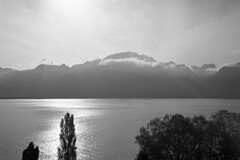 Le Mont Grammont, lac Léman  (Adox Silvermax) (Harald Philipp) Tags: view calm peaceful solitude paradise holiday vacation tourism exotic destination travel adventure wanderlust beautiful romantic atmosphere serenity dreamy enchanting haraldphilipp outdoors rural panorama scenic scenery landscape light sky clouds ethereal crepuscular mountain hill peak forest nature naturephotography artisticnature lake water nophotoshop 135 35mm film grain analog filmphotography primelens rollei35 sonnar 40mm f28 adox silvermax iso100 iso80 diafine nikon coolscan 5000ed selfdeveloped homedeveloped homedarkroom montreaux switzerland lakegeneva montgrammont lac lemann flare