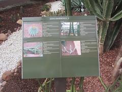 Plant information (Zona  Desértica 2) (d.kevan) Tags: plants arganzuelahothouse madrid zonadesértica2 description paths photos origin species commonname family