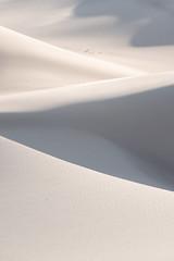 Colorado - The Dunes (virtualwayfarer) Tags: longlens sanddunes greatsanddunes dunesdune sand nature greatoutdoors outdoors landscape landscapephotography naturephotography wild nationalpark desert pristine protected dramaticnature aweinspiring southwest americansouthwest photographingamerica usa roadtrip sonyalpha sonynordic sonyamericas a7riii singleexposure abstract natgeo natural beautiful beauty travel scenic shadows windswept windy coloradorockies rockies continentaldivide alexberger travelphotographer