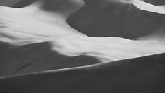 The Dunes - Colorado (virtualwayfarer) Tags: longlens sanddunes greatsanddunes dunesdune sand nature greatoutdoors outdoors landscape landscapephotography naturephotography wild nationalpark desert pristine protected dramaticnature aweinspiring southwest americansouthwest photographingamerica usa roadtrip sonyalpha sonynordic sonyamericas a7riii singleexposure abstract natgeo natural beautiful beauty travel scenic shadows windswept windy coloradorockies rockies continentaldivide alexberger travelphotographer blackandwhite blackandwhitephotography
