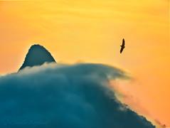IMG_4085_edit (cnajhar2) Tags: clouds mountains sky sun sunset bird