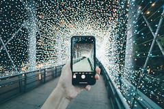 Christmasland in New Taipei City (Randy Sebastian) Tags: night nightview light led cityscape bridge taipei vsco cellphone borken superwide streetsnape street