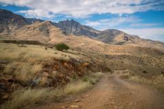 GY8A8950.jpg (Brad Prudhon) Tags: 2019 arizona fryemesa october dirtroad offroad