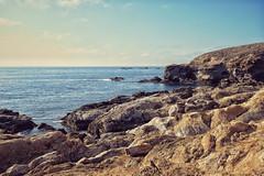 Point Lobos, Carmel, California (amy buxton) Tags: california wildlife forestpark environments water pacificocean pointlobos whalerscove landscape fall ocean monterey amybuxton stlouis