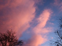 Daily Colours - Pink Cotton Candy (Pushapoze (MASA)) Tags: clouds nuages ciel sky rose pink cottoncandy