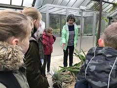 Plantentuin Gent