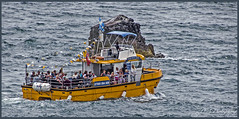 Photo of Tenby Boat trips 1CRW_2596