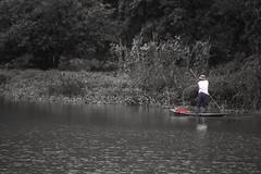 Remando (rraass70) Tags: canon d700 personas rio retoques agua ninbinh deltadelriorojo vietnam