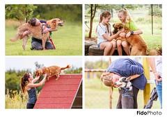 Hug Your Dog (FidoPhoto (John McKeen)) Tags: dog dogs dogphotography dogphotographer doglover dogportrait dogportraits dogportraiture canine mustlovedogs pet pets petphotography petphotographer petportrait petportraits petportraiture southafrica johannesburg copyrightjohnmckeen