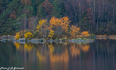 Autumn. Kalandsvatnet ( 2 ) (2000stargazer) Tags: kalandsvatnet jødeholmen fana bergen norway autumn autumncolors fall trees leaves yellowleaves lake waterscape reflections islet october nature landscape canon gettyimages