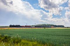 MUS 1943 (Arttu Uusitalo) Tags: hr1 1009 hoyryveturimatkat heritage train mus mus1943 finnishrailways finland south ostrobothnia summer day clouds blue sky field canon eos 5d mkiv charter